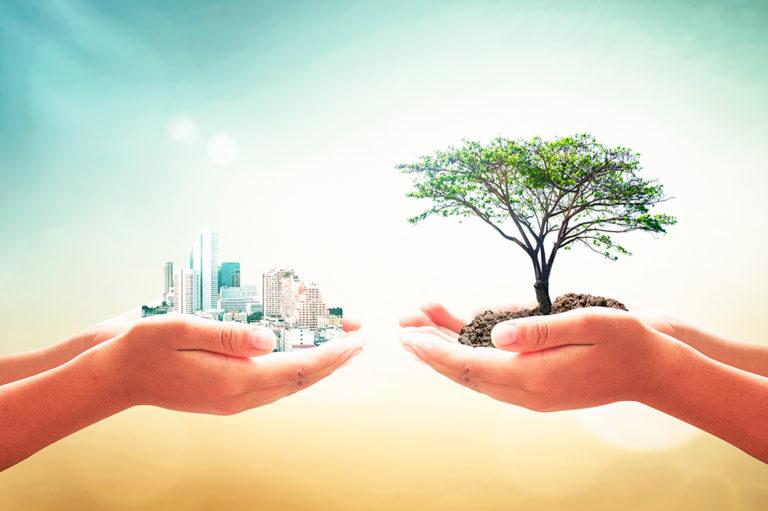 Bienestar y sostenibilidad: una apuesta necesaria